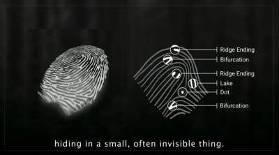 Let's analyze your fingerprints its reveal more than you think